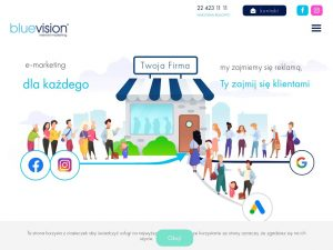 http://www.bluevision.pl